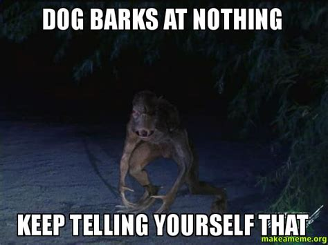 Barking Dog Meme - dog barks at nothing keep telling yourself that make a