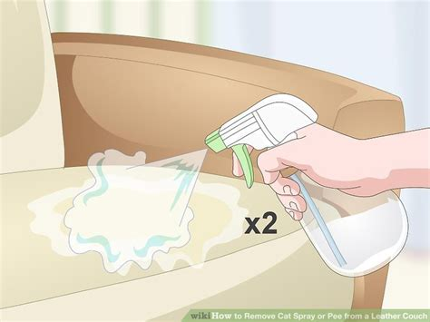removing cat urine from couch how to remove cat spray or pee from a leather couch 7 steps