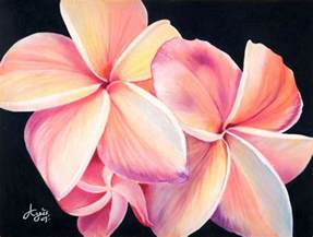 color flower best 25 pencil drawings of flowers ideas on