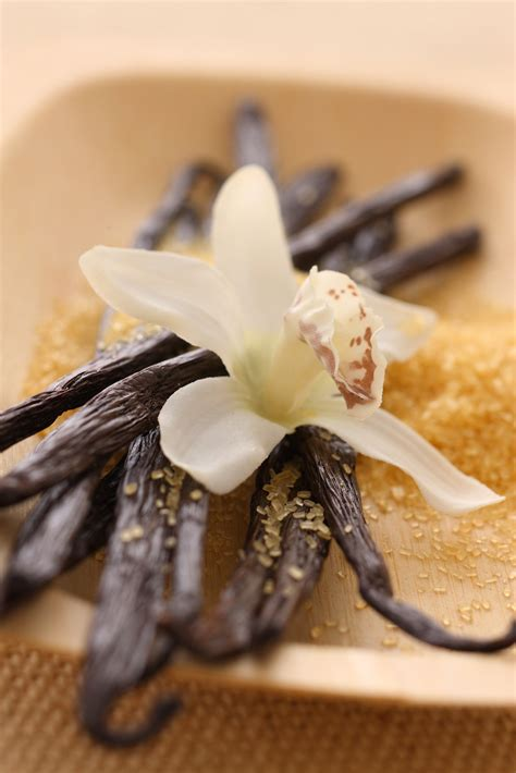 Vanilla Outher why is vanilla added to recipes