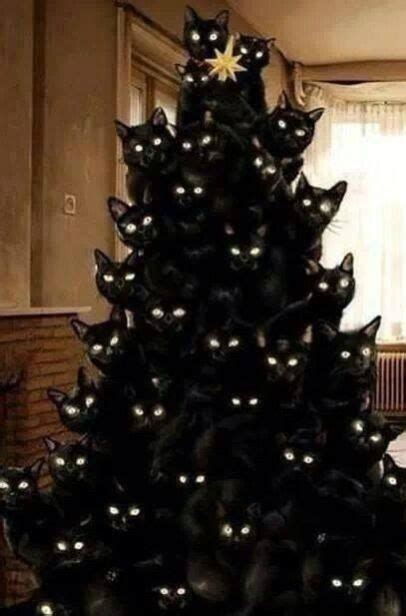 gothic christmas tree cat christmas tree christmas cats cats