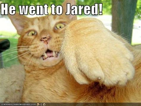 He Went To Jared Meme - image 207872 he went to jared know your meme