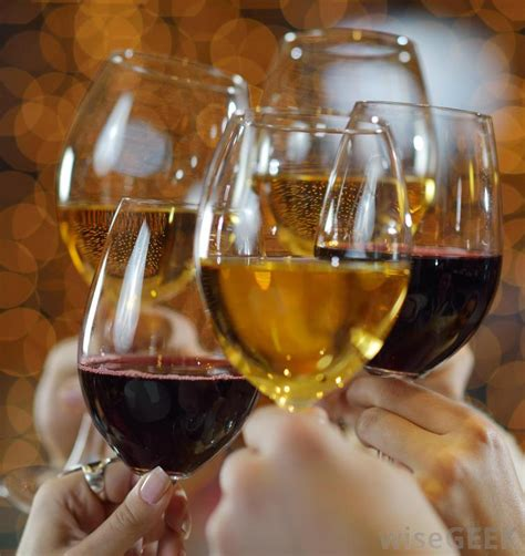 wine glass cheers what are the different types of wine glasses with pictures