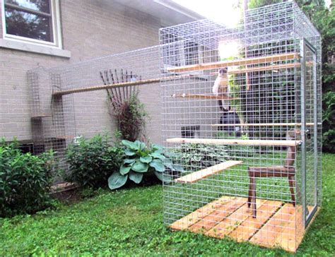 Patio Enclosure Kit Give Your Feline Friend Safe Access To The Outdoors With A