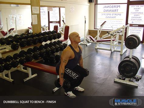 dumbbell bench squat dumbbell squat to bench video exercise guide tips