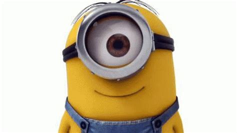 imagenes gif minions minions gif find share on giphy