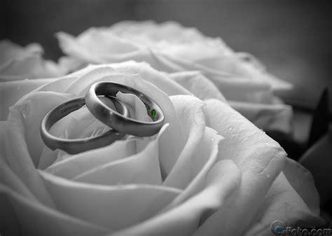 Ringe Hochzeit by Hochzeitsringe Cc Foto