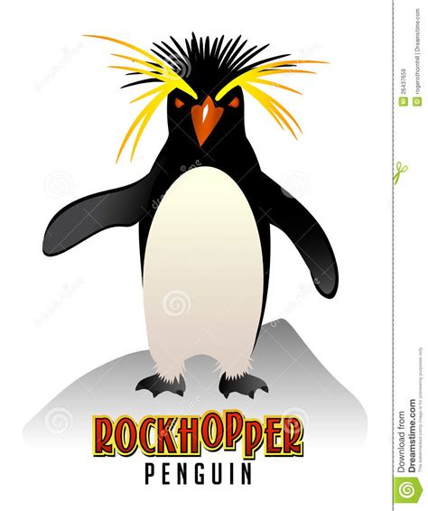 rockhopper penguin illustration royalty free stock images