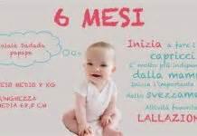 alimentazione 6 mesi neonato i primi mesi di vita neonato il primo anno mese per mese