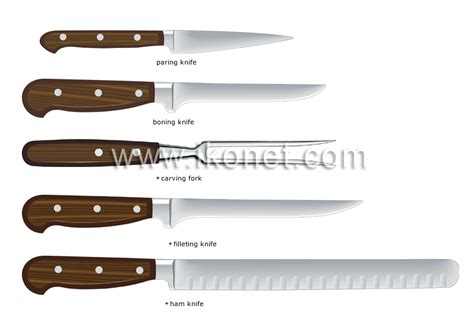 Kitchen Knives Names food and kitchen gt kitchen gt kitchen utensils gt examples