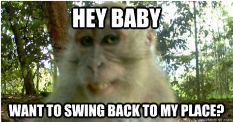 baby you need to swing my way hey baby want to swing back to my place pick up line