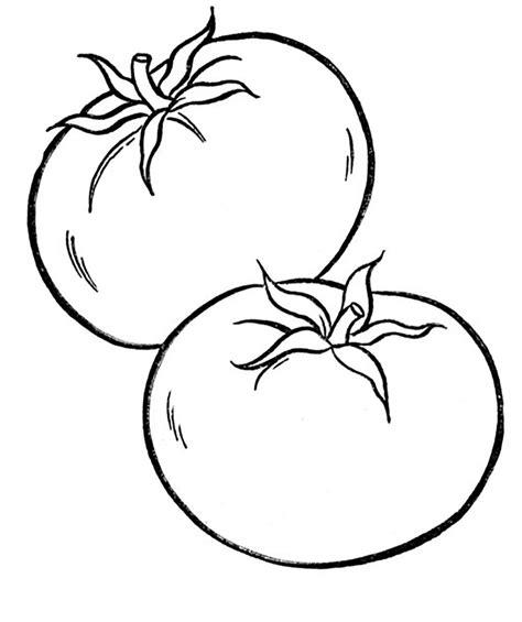 Drawn Tomato Colouring Pencil And In Color Drawn Tomato Colouring Printable Drawing Pictures