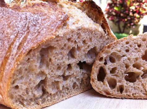100 hydration rye sourdough starter wholewheat rye sourdough the fresh loaf