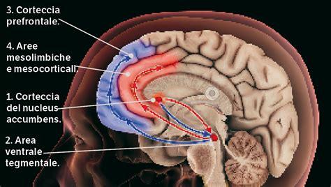 diversi tipi di droghe droghe pesanti lo spinello avvelenato focus it