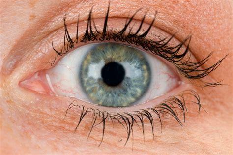 imagenes ojos sorprendidos mujer sorprende con ojos 250 nicos tiempo