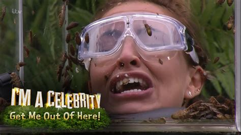 celebrity jungle 2017 youtube ferne spencer and vicky face terrifying bushtucker trial