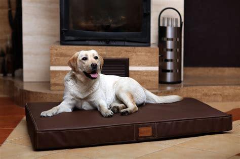materasso per cani cuccia materasso in pelle ortopedico riposo