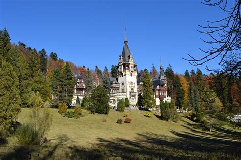 Exceptional Type Of Christmas Trees #10: Castle-1201580_960_720.jpg