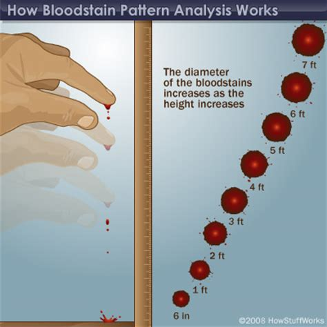 forensics spatter analysis forensic bloodstain pattern analysis