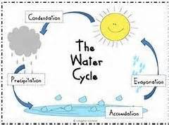 montessori worksheets for toddlers free water cycle 17 best images about kindergarten water cycle on