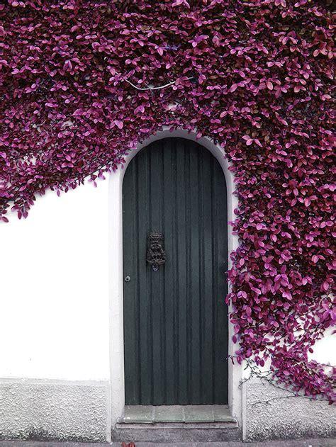 75 Most Unique Front Doors From Around The World Placeaholic Around Front Door