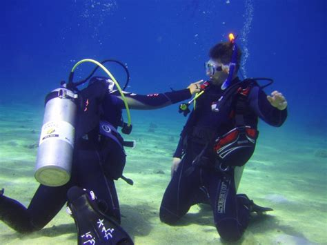 dive in sharm discover scuba diving in sharm sharm el sheikh excursions