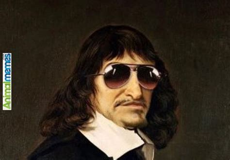 Descartes Meme - funny memes descartes and the philosophy band funny
