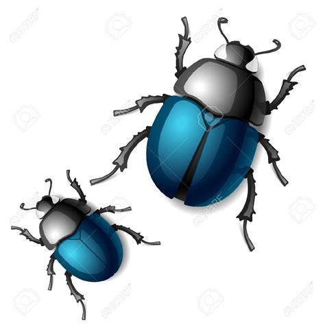 arts clipart scarab beetle clip cliparts