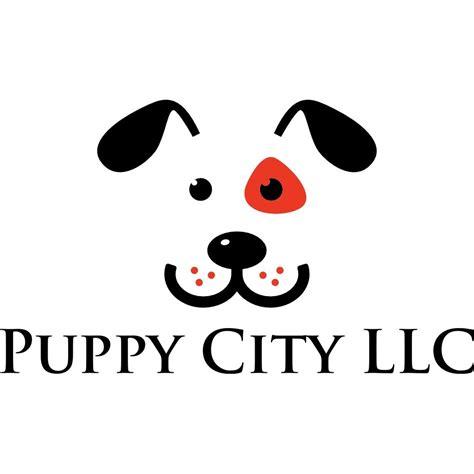 puppy city winchester puppy city llc in winchester va 22602 chamberofcommerce