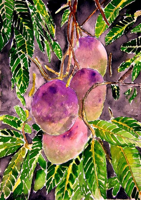 mango tree with fruits mango tree fruit painting by derek mccrea