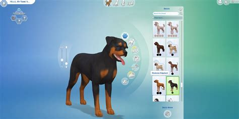 sims 4 pug the sims 4 cats dogs complete list of pet breeds 170 simsvip