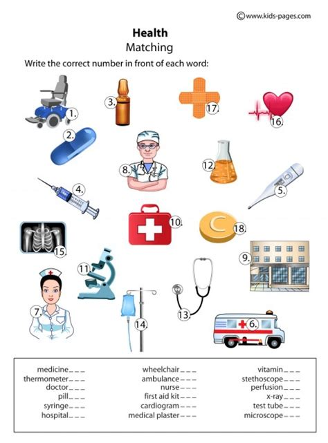 Health Worksheets by Health Matching Worksheet