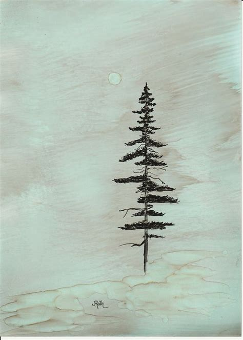 redwood tree tattoo ink drawing quot coastal redwood quot print matted backed