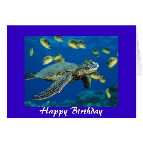 Turtle Birthday Card Template by Turtle Birthday Cards Photo Card Templates Invitations