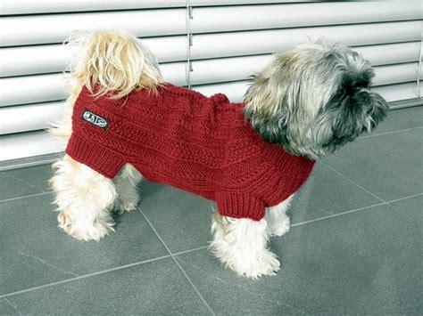 Hundepullover Chihuahua Häkeln by Las 25 Mejores Ideas Sobre Hundepullover H 228 Keln En