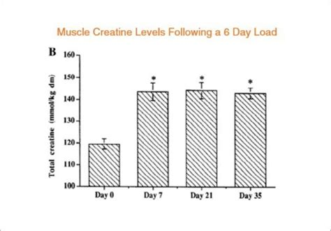 creatine 2 grams a day how creatine helps you gain and strength