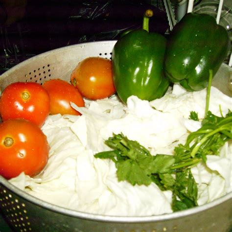 resep diet  sayur pembakar lemak resep hari