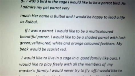 Essay On If I Was A In essay if i was a bird in a cage