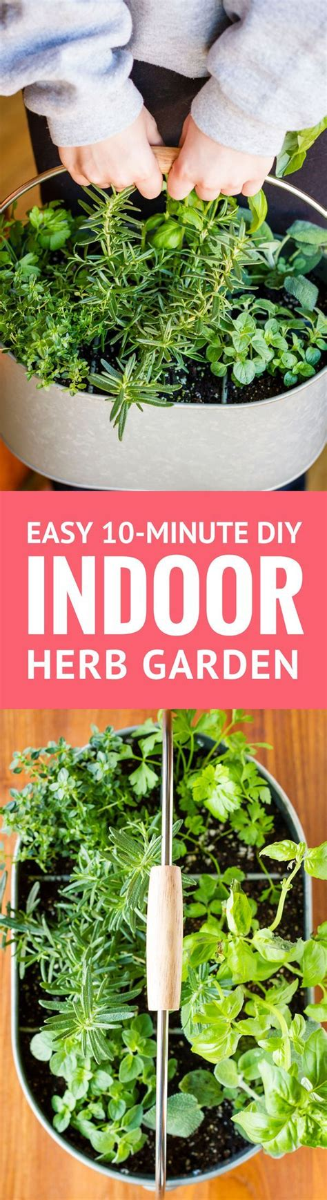 easy herbs to grow inside create a simple diy indoor herb garden in under 10 minutes