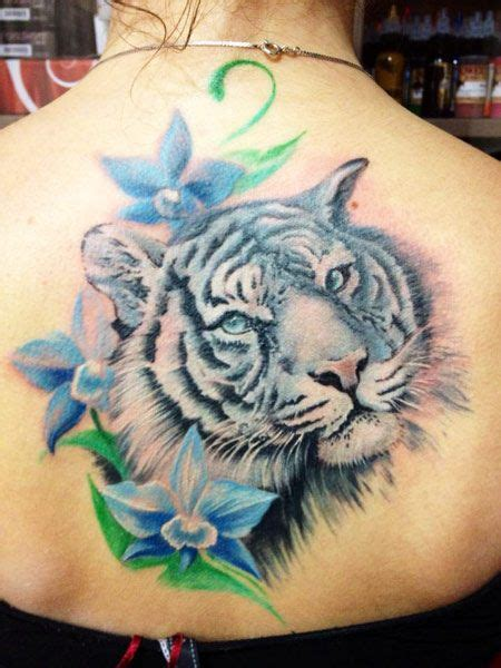 white tiger tattoos best 25 white tiger ideas on tiger