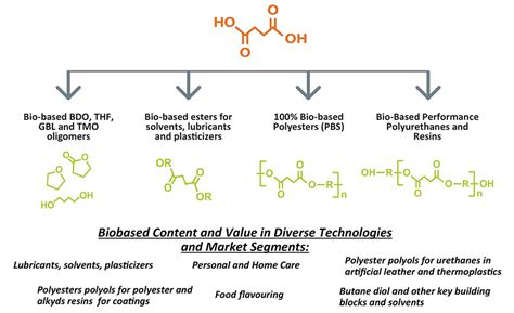 biography documentary structure advancing adhesives bio based succinic acid polyester