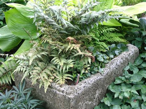 How To Make A Hypertufa Planter by For A Hypertufa Planter Diy