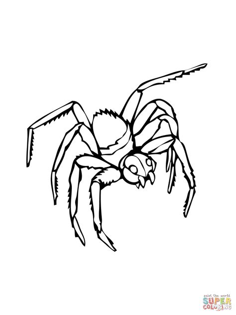 black spider coloring page black widow coloring page free printable coloring pages