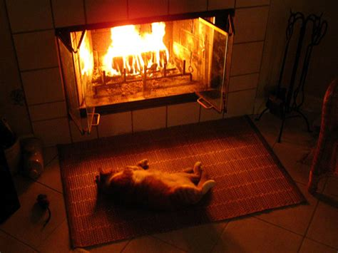 Warm Fireplace by Baby It S Cold Outside How To Keep It Warm Inside