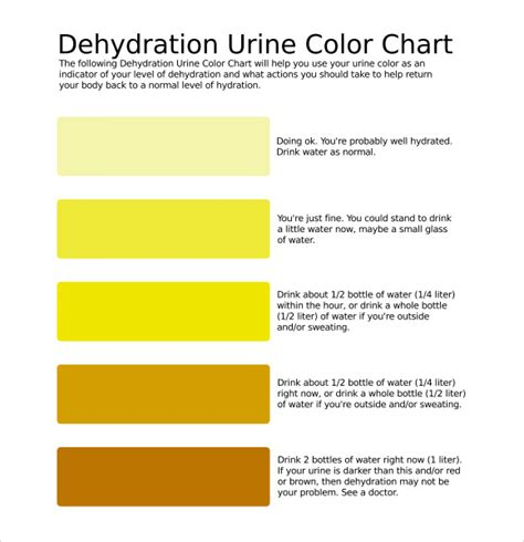 color of urine when dehydrated urine color chart 9 free for pdf