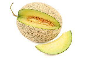 can dogs honeydew honeydew melon aspca