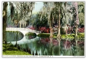 history of magnolia plantation