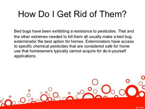 What Do Exterminators Use To Kill Bed Bugs by Signs You May Need A Bed Bug Exterminator