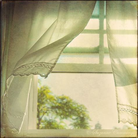 see the curtains hanging in the window 584 best images about open windows on pinterest window