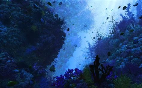 underwater themes for windows 10 underwater windows 10 theme themepack me